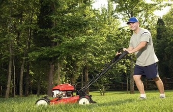 If you like being outdoors, you can make extra money on your summer break by working in lawn care.