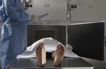 Forensic assistants prepare bodies for autopsy.