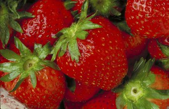Legally selling strawberries requires more than just stocking grocery shelves.