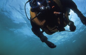 Deep-water divers learn how to ascend in stages to equalize pressure.