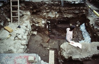 Some anthropologists conduct field work at historical excavations.