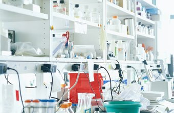 Laboratory assistants help keep labs organized and equipment in working order.