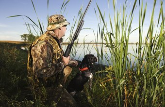 Game wardens enforce laws related to hunting and fishing.