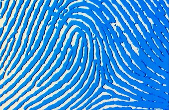 Latent evidence specialists identify and analyze clues such as fingerprints.