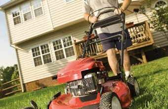 Lawn care is an easy way to start a home business.