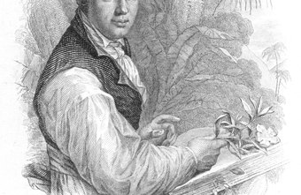 German naturalist Alexander von Humboldt is considered to be one of the first ecologists.