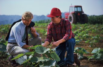 Agricultural inspectors are knowledgeable in horticulture.