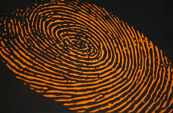 Fingerprints are a type of crime scene evidence.