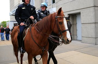 Mounted police officers usually earn more in New York, California and Illinois.