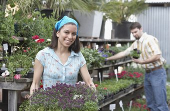 Plant nurseries can segment the marketplace to maximize sales.