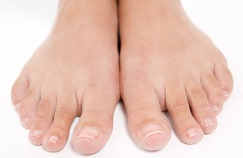 podiatrists are trained to examine the feet and ankles