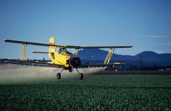 A crop duster flies over a tulip field while spraying it with chemicals.
