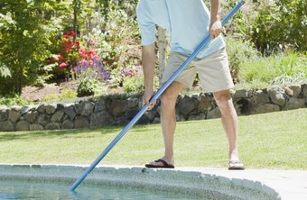 A pool cleaning service can be lucrative if properly implemented.