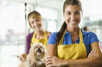 Determining the valuation of dog grooming business requires careful accounting.