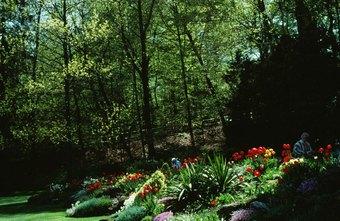 A Job Description for Residential & Commercial Landscaping Design ...