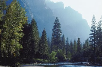 Yosemite National Park is just one of the stunning locations you might work as a park ranger.