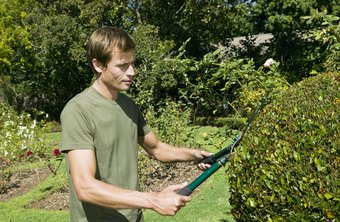 Horticulturists establish and maintain landscaping.