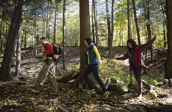 Track the distance you hike using a pedometer, a GPS or a map.