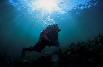 Underwater salvage divers earn more in some East-Coast states.