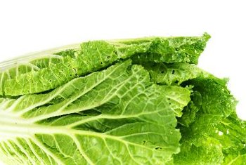 Green leaf lettuce is a rich source of vitamin A.