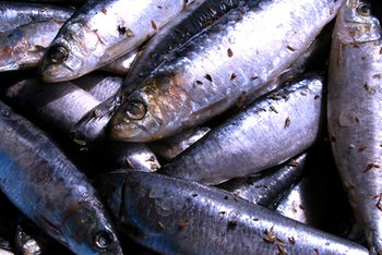 If you're at risk of gout, steer clear of purine-rich sardines.
