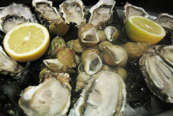 Oysters are a rich source of zinc and selenium.