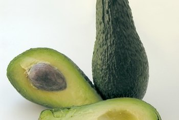 Carbohydrates and lipids, such as those in an avocado, are digested in different ways.
