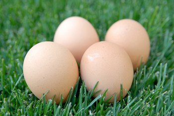 Eggs provide nutrients needed by the thyroid.