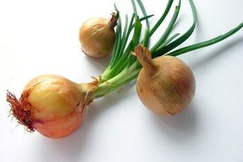 Onions provide a variety of immune-boosting benefits.