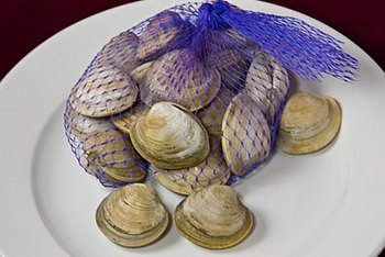 Clams are an excellent source of vitamin B-12.