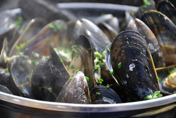Steamed mussels are high in protein.
