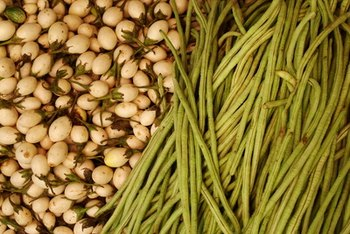 Legumes or beans are a fiber-rich carbohydrate food.