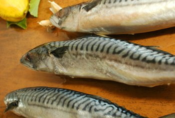 Mackerel is a good option for a low-carb diet.