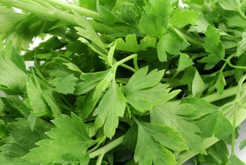 Eat parsley as a rich source of vitamin K.