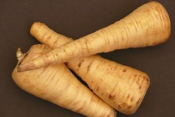 Parsnips contain a high concentration of folate.
