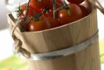 Tomatoes are a nutritious member of the nightshade family.