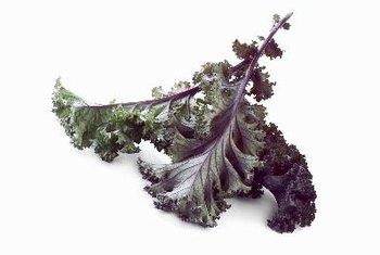 Kale chips darken when they bake.