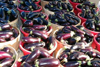 Chinese and Italian eggplants have different shapes and textures, but both are high in antioxidants and fiber.