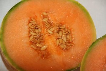 Melon contains a small amount of folate.