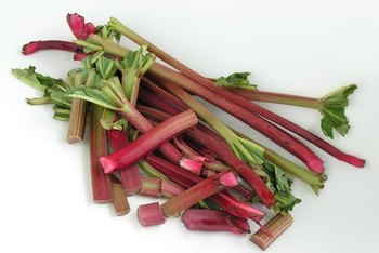 Only the stalks of rhubarb are edible.