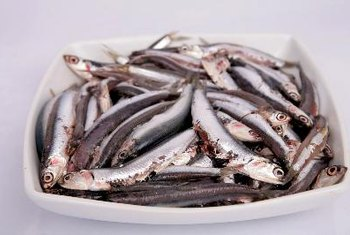 Anchovies are a healthy source of protein.