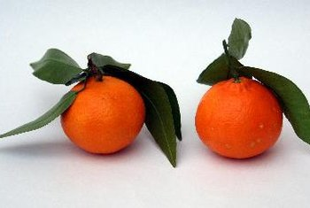 Tangerines can be easier to peel than oranges.