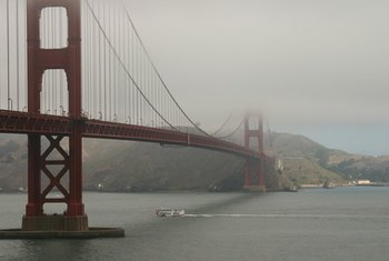 Climates, such as San Francisco's, can cause mold and mildew.