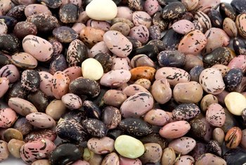 Beans are a rich source of insoluble fiber.
