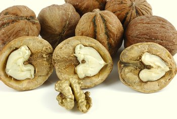 Kenari merupakan sumber asam lemak omega-3.