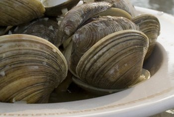 Clams are especially rich in vitamin B12.