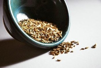 Fennel seeds spice up meals and also offer a variety of medicinal properties.