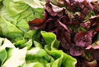 You can combine various lettuces with colorful vegetables in a fresh salad.