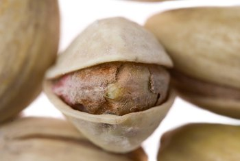 Open shells are a sign of ripe pistachios.