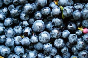 Blueberries are a superfood that may improve your memory.